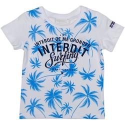 Vêtements Garçon T-shirts & Polos Interdit De Me Gronder PALM BEACH Blanc