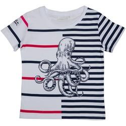 Vêtements Garçon Polos manches courtes Interdit De Me Gronder OCTOPUS Bleu marine