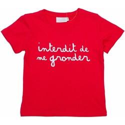 Vêtements Enfant Polos manches courtes Interdit De Me Gronder L'INTERDIT Rouge