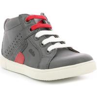 Chaussures Garçon Baskets montantes Aster Yurl GRIS