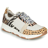 Chaussures Femme Baskets basses Gioseppo CREAZZO Leopard