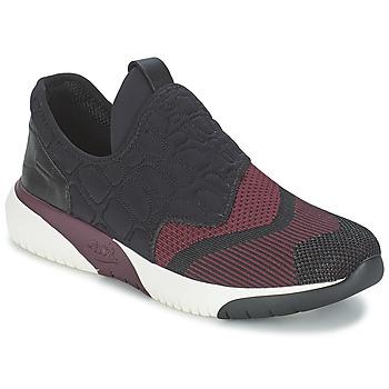 Chaussures Femme Baskets basses Ash SODA Bordeaux