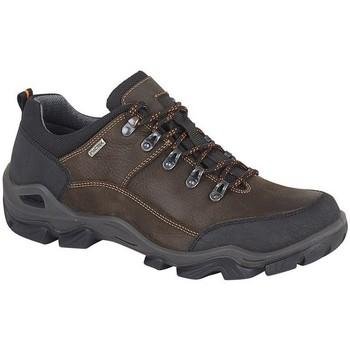 Chaussures Homme Randonnée Imac  Marron foncé