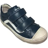 Chaussures Garçon Baskets basses Stones And Bones chino bleu