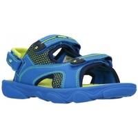 Chaussures Garçon Sandales sport Joma 2004 Royal Flour Niño Azul bleu