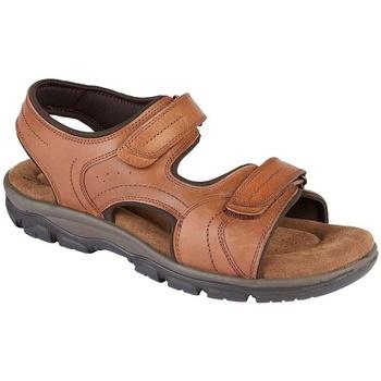 Chaussures Homme Sandales et Nu-pieds Roamers  Marron clair