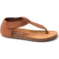 Chaussures Femme Sandales et Nu-pieds Tambi KALA Marron