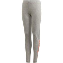 Vêtements Fille Leggings adidas Originals Collants Linear gris