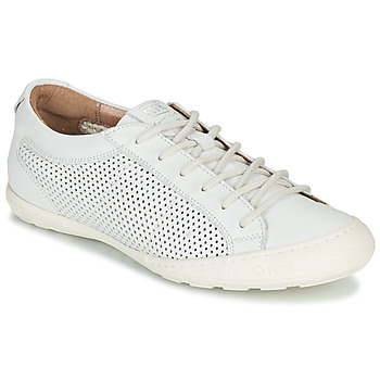 Chaussures Femme Baskets basses PLDM by Palladium GRACIEUSE LEA Blanc