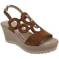 Chaussures Femme Sandales et Nu-pieds Angela Calzature ANSICE2240marr marrone