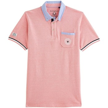 Vêtements Homme Polos manches courtes Black Wellis SAILING HERITAGE AQUA Orange clair
