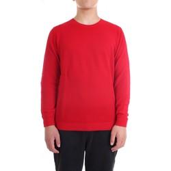 Vêtements Homme Pulls Diktat DK77007 rouge