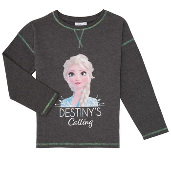 Vêtements Fille T-shirts manches longues TEAM HEROES  FROZEN Gris