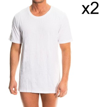 Vêtements Homme T-shirts manches courtes Tommy Hilfiger Pack-2 Tommy H. Undershirt Blanc