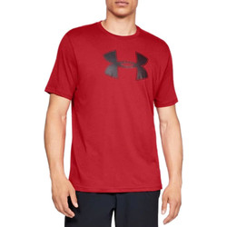 Vêtements Homme T-shirts & Polos Under Armour Big Logo SS Tee 1329583-600
