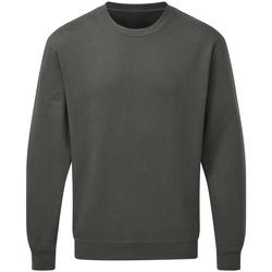 Vêtements Homme Sweats Sg SG20 Gris sombre