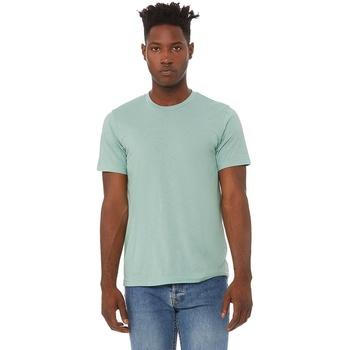Vêtements Homme T-shirts manches courtes Bella + Canvas CA3413 Bleu menthe
