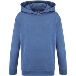 Vêtements Enfant Sweats Fruit Of The Loom Hooded Bleu roi chiné