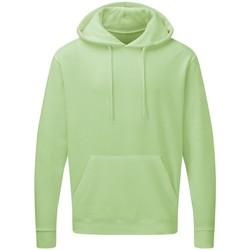 Vêtements Homme Sweats Sg Hooded Vert pastel