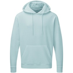 Vêtements Homme Sweats Sg Hooded Bleu pastel