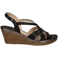 Chaussures Femme Sandales et Nu-pieds Melluso HO19046 Avec coin Femme NOIR NOIR