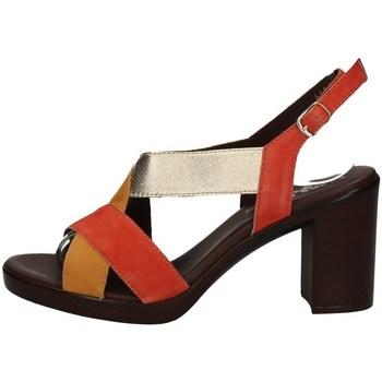 Chaussures Femme Sandales et Nu-pieds Melluso R80311X DES SANDALES Femme MULTICOLORE MULTICOLORE