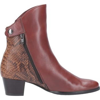 Chaussures Femme Bottines Riva Di Mare Armadillo Pitone Leather Bronzer