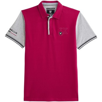 Vêtements Homme Polos manches courtes Black Wellis RASPBERRY RUGBY ORIGINS Rose framboise