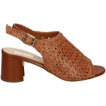 Chaussures Femme Sandales et Nu-pieds Melluso HS539 CUIR
