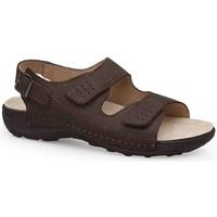 Chaussures Homme Sandales et Nu-pieds Calzamedi SANDALES  BECHAMP MARRON