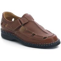 Chaussures Homme Sandales et Nu-pieds Calzamedi SANDALES  GIOTTO MARRON