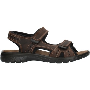 Chaussures Homme Sandales sport Imac 503370 marron