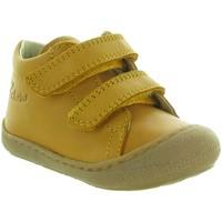 Chaussures Garçon Boots Naturino & Falcotto COCOON BOY VELCRO Jaune