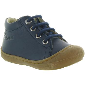 Chaussures Garçon Boots Naturino & Falcotto COCOON BOY Bleu