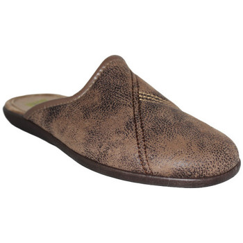 Chaussures Homme Chaussons Anatonic 24778 Marron
