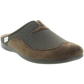 Chaussures Homme Chaussons La Maison De L'espadrille 6722 Marron