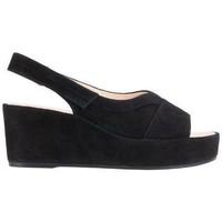 Chaussures Femme Sandales et Nu-pieds Högl Close Talons Bas Noir Noir