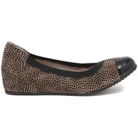 Chaussures Femme Ballerines / babies Le Babe BALLERINA PUNTINI  SAFARI    112,9
