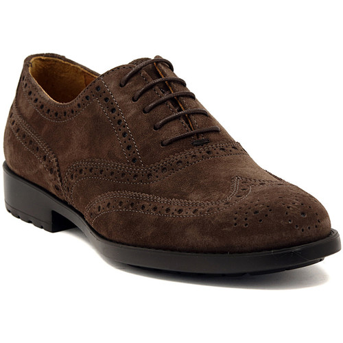 Chaussures Homme Richelieu Marco Ferretti NEWPORT BROWN Multicolore