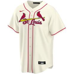 Vêtements Homme T-shirts manches courtes Nike Maillot de Baseball MLB St. Lo Multicolore