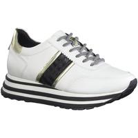 Chaussures Femme Baskets basses Tamaris 23737 blanc