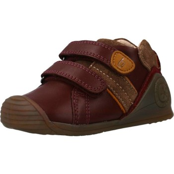 Chaussures Fille Baskets basses Biomecanics 191153 Rouge