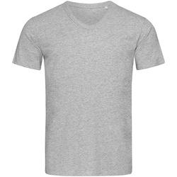 Vêtements Homme T-shirts manches courtes Stedman Stars  Gris chiné