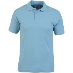 Vêtements Homme Polos manches courtes Absolute Apparel  Bleu clair
