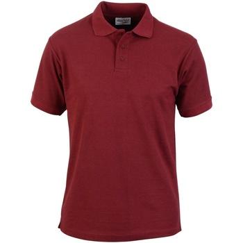 Vêtements Homme Polos manches courtes Absolute Apparel  Bordeaux
