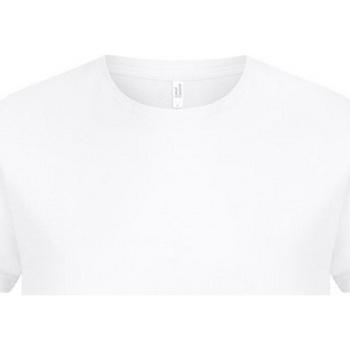 Vêtements Homme T-shirts manches courtes Casual Classics  Blanc
