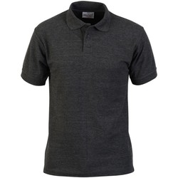 Vêtements Homme Polos manches courtes Absolute Apparel  Anthracite