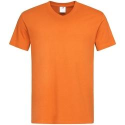 Vêtements Homme T-shirts manches courtes Stedman  Orange