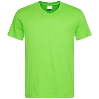 Vêtements Homme T-shirts manches courtes Stedman  Vert clair