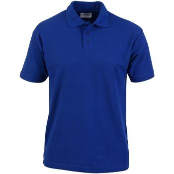 Vêtements Homme Polos manches courtes Absolute Apparel  Bleu roi